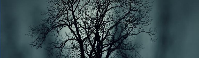 header tree